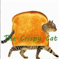 TheCrispyCat