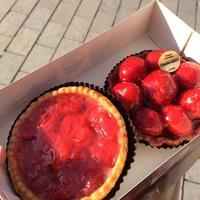 RaspberryFlower_fml