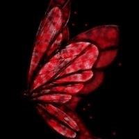 RedButterfly5