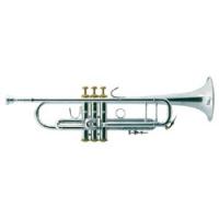 Mr_Trumpet
