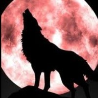 lonewolf6613