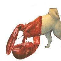 lobsterdog