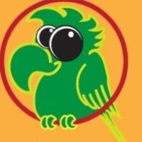 birdsruntheworld