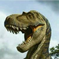 Dinoman105