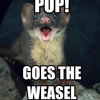 theweasel
