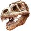 <b>paleontology</b> - the 02/25/2011 at 6:03pm