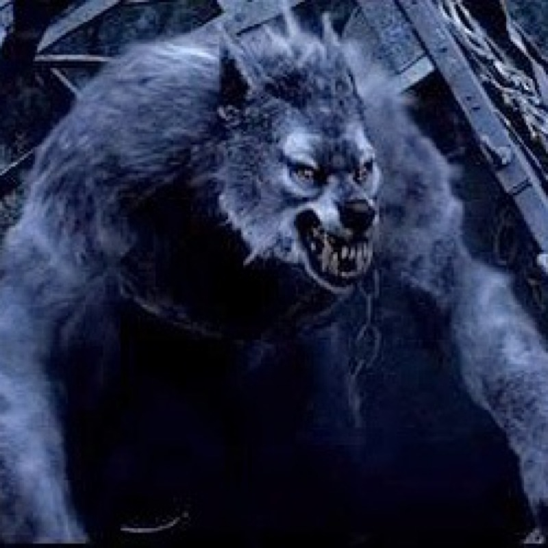 wolfman2123