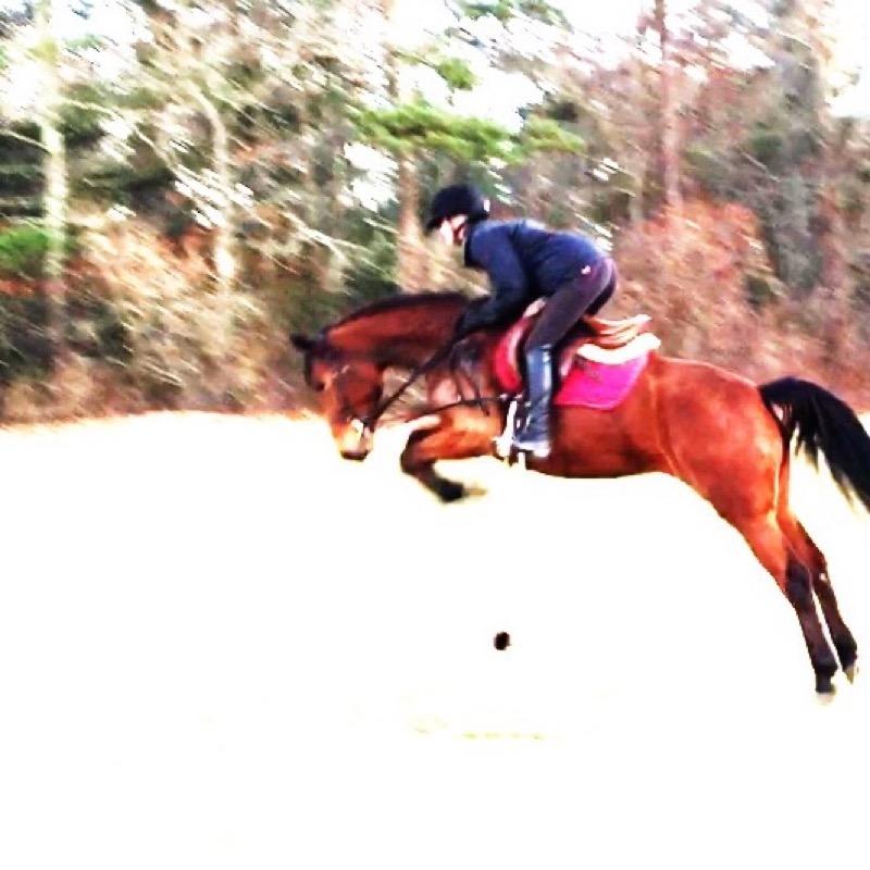 w_pony_4ever