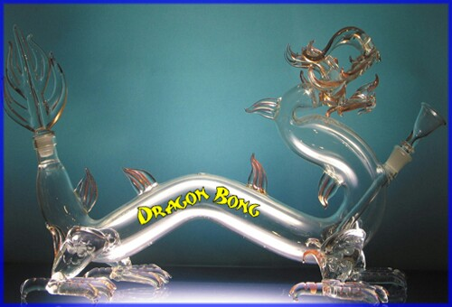 dragon420