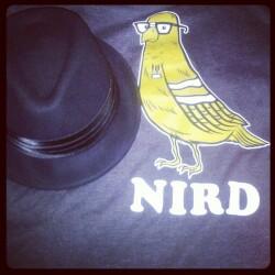 IT_Nird95