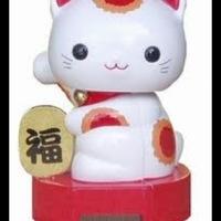 kittylady666