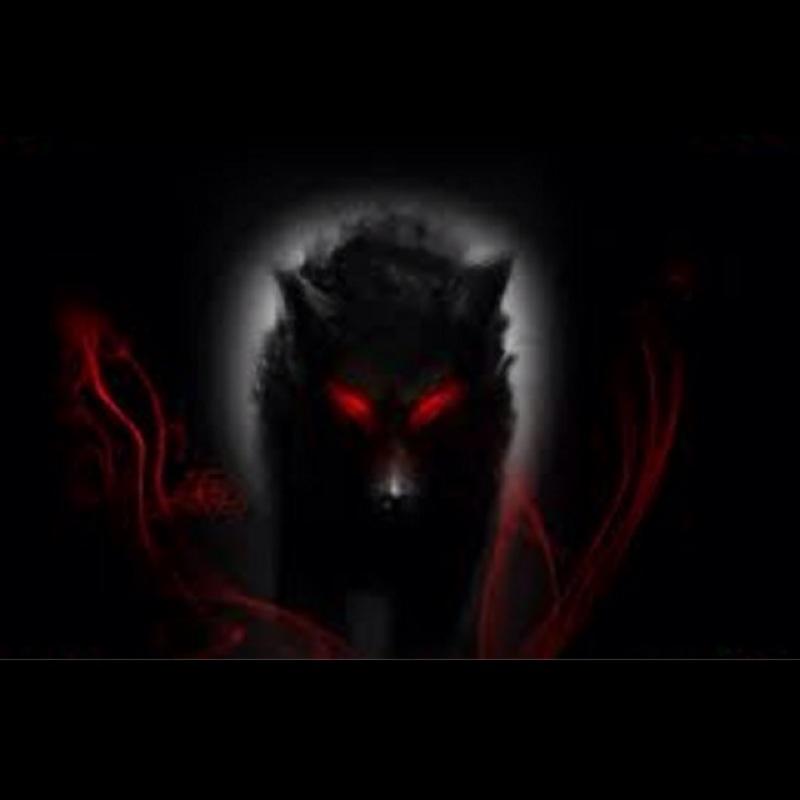 Dark_Wolf123