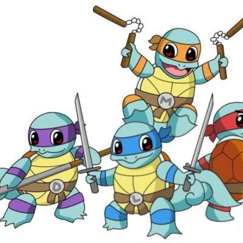 turtle_turtle_4