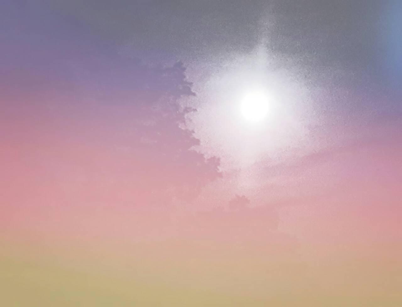 shadypalmtree