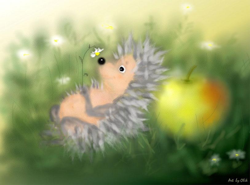 hedgehog_in_fog