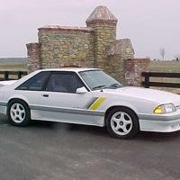 MustangMan29