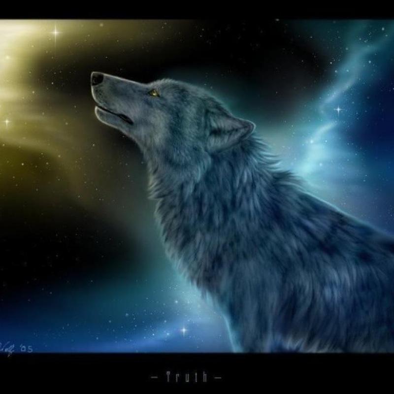 moonstruckwolf
