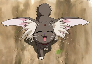 KittyKida